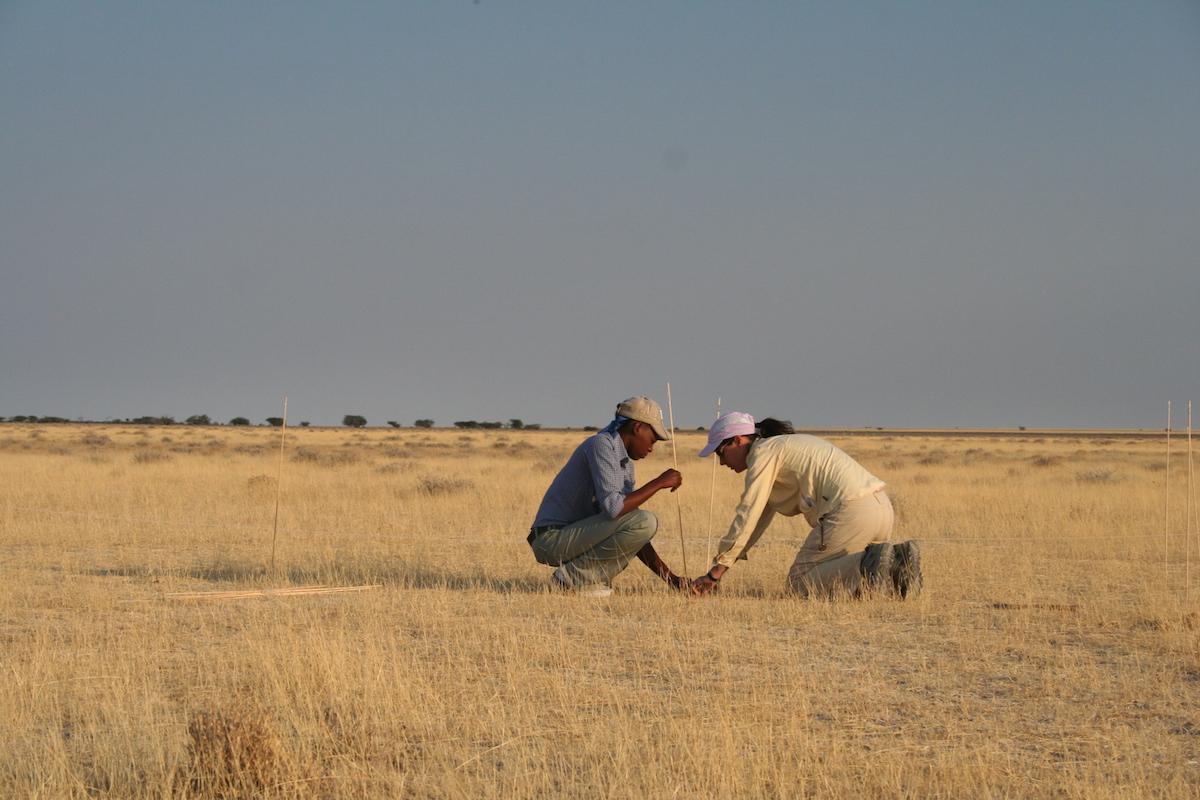 Pathogen Ecology and Evolution